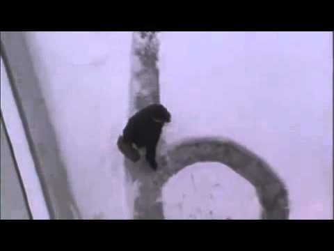 Humoorikas VIDEO: Vaata, kuidas majahoidja kortermaja elanikke karistas