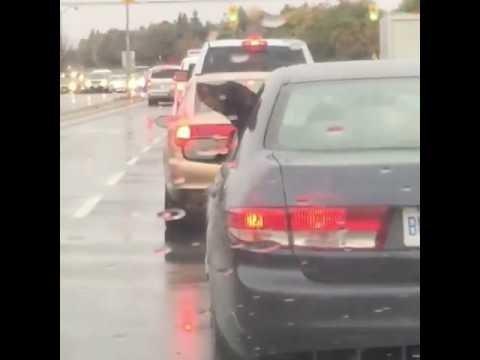 Lõbus VIDEO: Huumorikas vaheseik liikluse tipptunnil