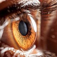 Uskumatuid, lausa imestusväärseid fakte silmadest, mida sa varem ei teadnud