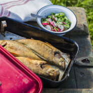 Kuidas teha kala suitsutuskastis?