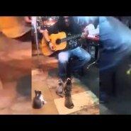 Üliarmas VIDEO: publikuta tänavamuusik oli valmis juba lahkuma, kui korraga ilmus neli muusikasõpra