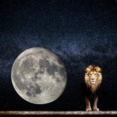 Hindu astroloogia | Täiskuu Lõvi sodiaagimärgis aitab leida küllust ja õnne
