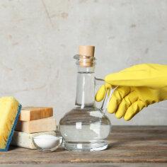 Häid nippe, kuidas kodu keskkonnasõbralikumalt koristada
