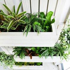 FOTOD: Säti oma aed vertikaalseks!