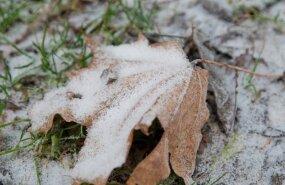 Предсказатели говорят, когда выпадет первый снег, и какой будет погода на Новый год