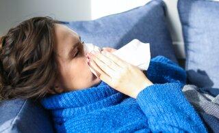 """Особенности """"британского"""" штамма коронавируса: сильнее кашель и утомление, реже — потеря обоняния"""