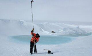 Antarktika uurimisretke juht: vale samm samblikule võib ökosüsteemi pikaks ajaks rikkuda