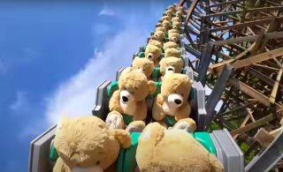 ВИДЕО | Ничего необычного: просто 22 плюшевых медведя катаются на американских горках