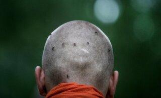 FOTOLUGU: Buda mungad ei tee sääselegi liiga