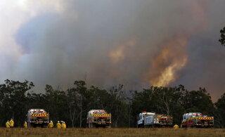 DELFI AUSTRAALIAS I Tänak ja teised rallisõitjad jäid Austraalias keset katastroofiolukorda lõksu