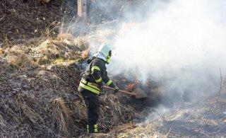 Местные жители деревни в Йыгевамма обнаружили у своего дома обгоревший труп