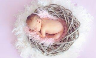 """""""Корона"""" вошла в топ имен для новорожденных в США"""
