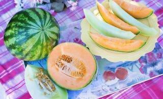 Mille poolest on melon väga kasulik ja kuidas valida omale küps vili?