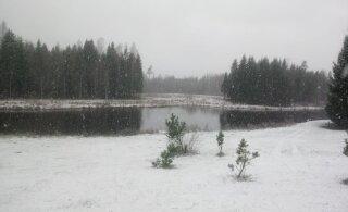 VIDEO ja FOTOD | Otepääl sadas eile laia lund ja maad katab lumevaip