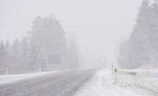 ФОТО: Первый снег укрыл Вильяндимаа белоснежным ковром