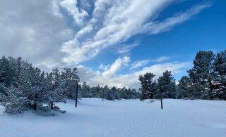 ФОТО И ВИДЕО | Второй день весны принес в Эстонию... живописную зиму!