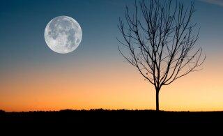 Голубая Луна 31 октября 2020 года: чем она уникальна и какие опасности сулит знакам Зодиака