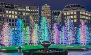 Eesti jõulukaunistused on mitmel pool maailmas nõutud kaup