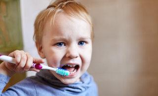Uuring tõestas: vanemad ei õpeta lapsi korralikult hambaid pesema, mudilaste suutervis on kohutav