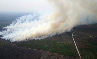 Гран-при Сингапура может быть отменен из-за пожаров