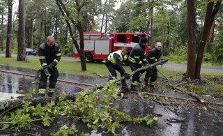 Ветреный год: в прошлом году шторм причинил на 40% больше ущерба