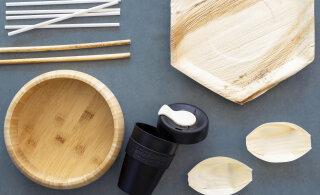 Тарелки из пальмового листа и трубочки из тростника. Как сделать пикник экологичным?