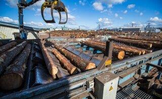 Koroonaviirus võib tugevalt mõjutada Eesti puidutööstust