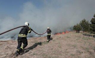 FOTOD JA VIDEO | Tori vallas põhjustas autoga heinamaale sõitmine 17 hektari suuruse tulekahju