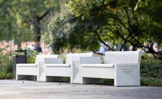 В парке Таммсааре появится необычная детская площадка