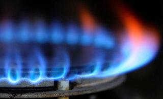 У кого покупать электричество и газ, а также как поменять поставщика услуг