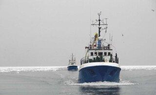 Лов трески у берегов Эстонии почти прекратят