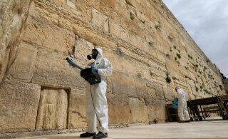 ФОТО | В Израиле продезинфицировали Стену Плача