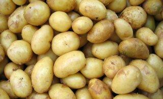 Murrame müüte: kas süsivesikute tarbimist peab piirama ja kas kartul teeb tõesti paksuks?