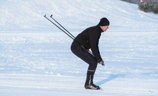 Лыжные трассы Ласнамяэ ждут всех желающих