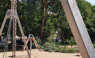 ФОТО: В Мустамяэ огромная ветка упала на детскую площадку