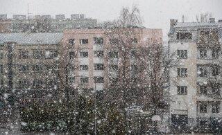 ФОТО: Вот такая весна... В Таллинне шел снег. Чего ждать от погоды в первые дни апреля?