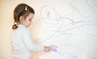 VIDEO | Laps sodis kriitidega seina? Sinu külmkapis leidub vahend, mis aitab sul neist kritseldustest kiiresti vabaneda