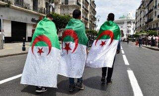 Выборы президента Алжира могут могут перенести: кандидаты не подали документы