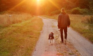 Koer tagab omanikule pikema eluea