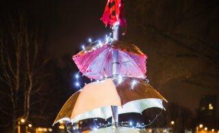 ФОТО | Слепили из того, что было. Смотрите, какие необычные елки установлены в рождественском парке на Певческом поле