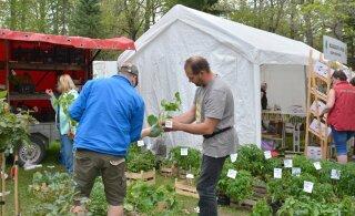 Virumaa suur suvi algab nädalavahetusel Jäneda aia- ja lillepäevadega