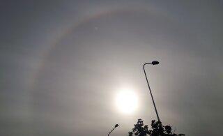 Фото читателя Delfi: сегодня в Ласнамяэ видели редкое природное явление