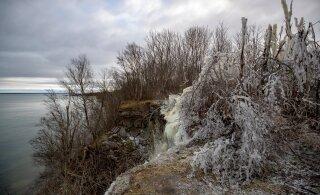 ФОТО: Красота неописуемая! Погоды стоят нынче дивные: ясные, снежные, чуть морозные