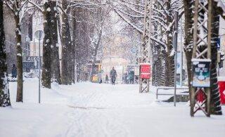 Aastatagusega võrreldes kui öö ja päev: jaanuar toob talvekülma ning osa Eestit mattub ilmselt lumevaiba alla