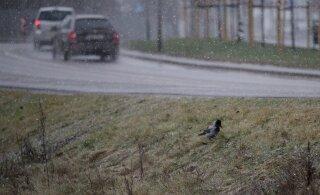 Погода на выходных: сначала будет спокойно, но потом пойдут дожди и мокрый снег