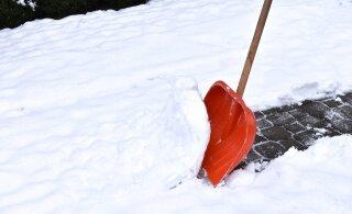 Не заказанная вовремя уборка снега впоследствии может дорого обойтись