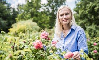 ROOSE TASUB SÜÜA: Eesti aiarooside õied on tervistavatest ainetest pungil