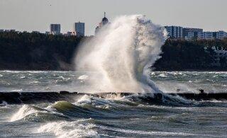 INTERAKTIIVNE KAART | Erakorraline teave ilmateenistuselt: tuleb tugev torm, võib oodata elektrikatestusi ja puude murdumist