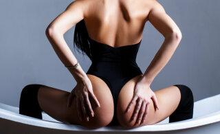 Kuidas naine orgasmini viia – seksikad naistepäeva kingisoovitused!