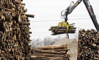 GRAAFIK | Valitsus lükkab Narvas jälle puidu ahju - kuidas mõjub see meie elektriarvele ja puiduturule laiemalt?